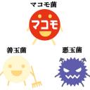 マコモ菌、善玉菌、悪玉菌_02_640