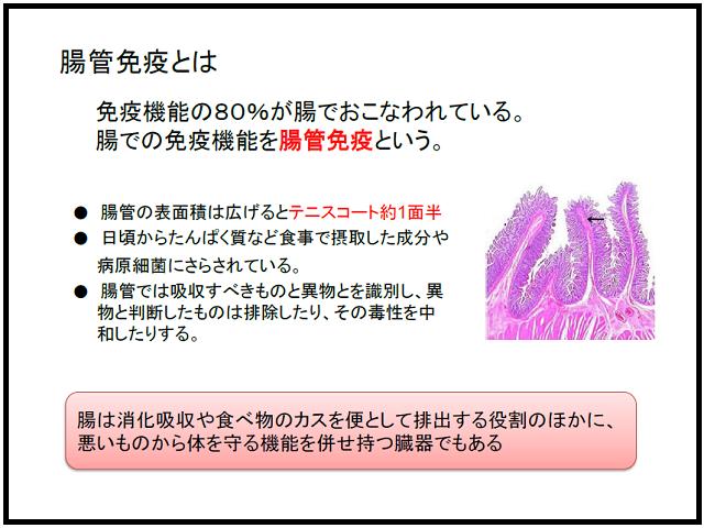 腸管免疫_640